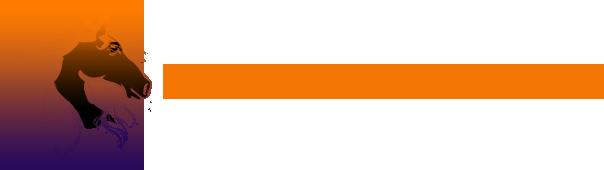saddle-logo-4-.png